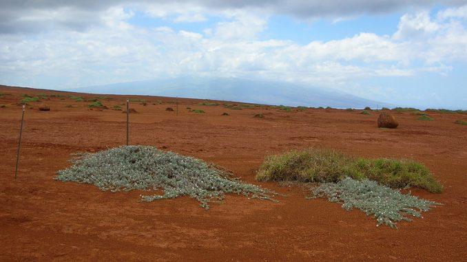カホオラヴェ島 ハワイの山