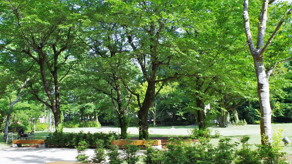 緑の豊かな西洋庭園