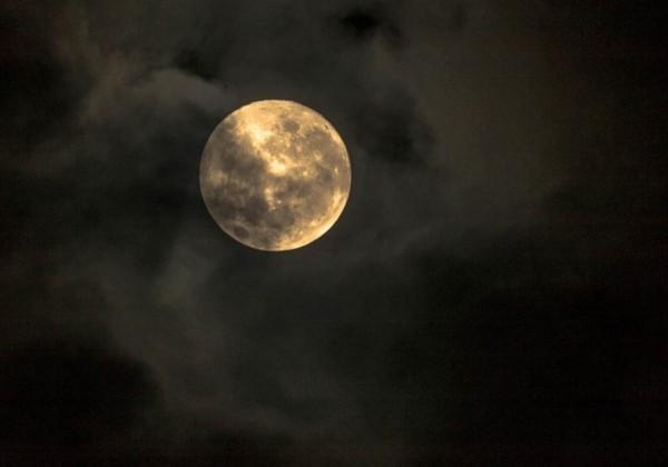 夜半の月 紫式部 百人一首