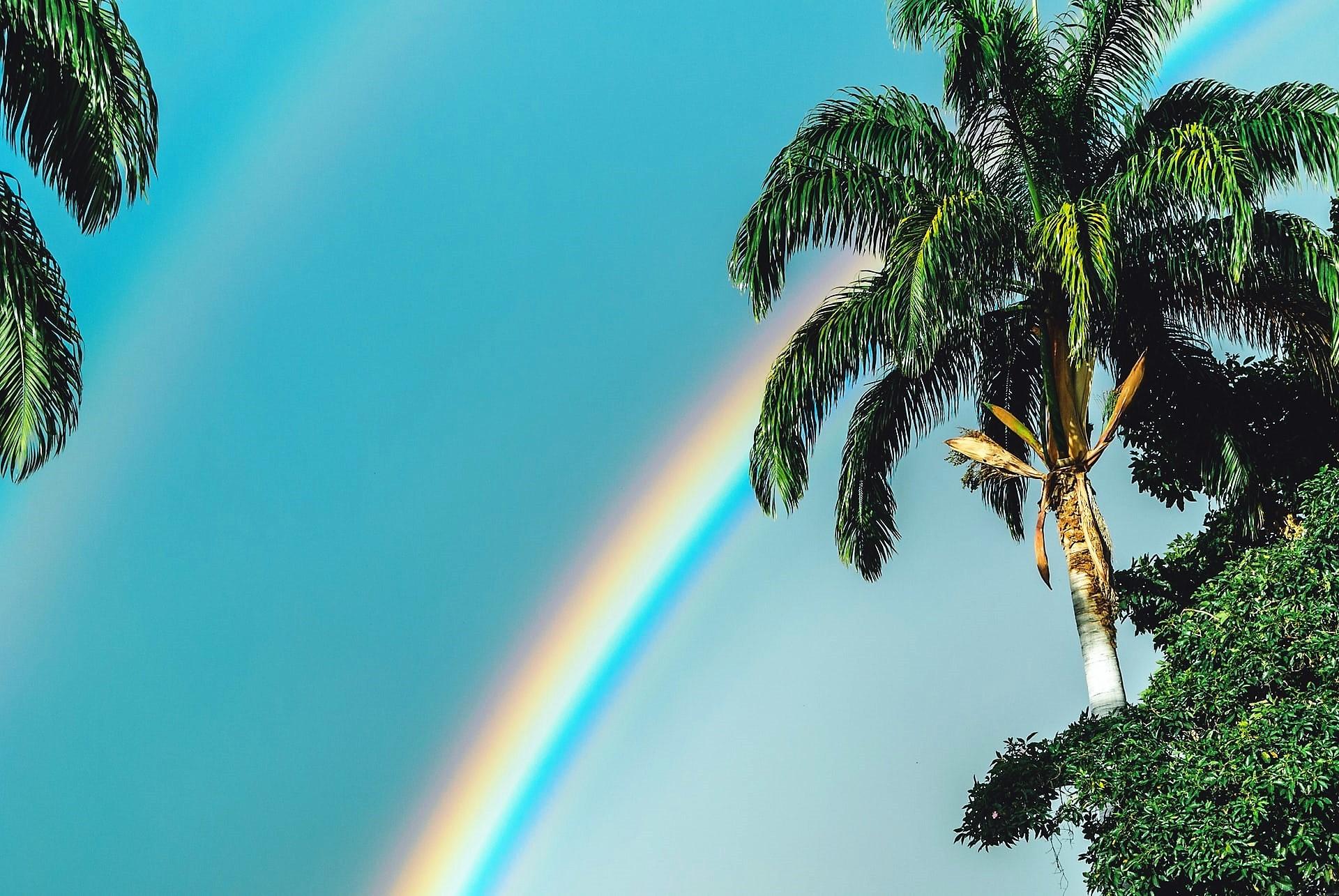 ダブルレインボー 虹 ハワイ