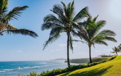 「ケ・アア・オ・ナ・ラニ(Ke ʻAʻa O Nā Lani)」~心地よいハワイアン・ソングで、ハワイの大自然や伝統・文化、人々の勇気と愛を感じよう!