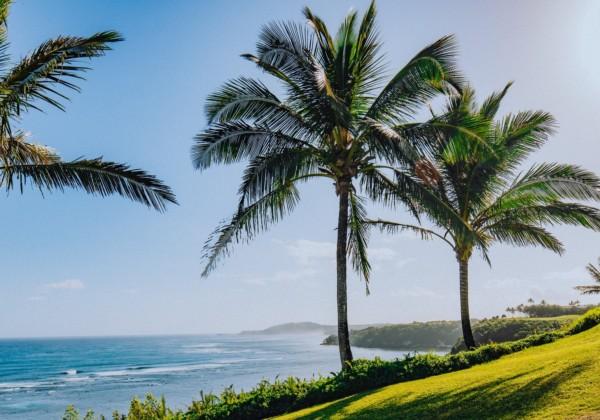 ハワイ 海岸