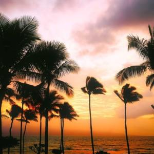 ハワイ ハワイアン・ララバイ 子守歌