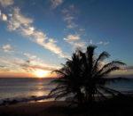「Ku'u Leo Aloha(クウ・レオ・アロハ)」心に効く!まるで処方箋のような優しいハワイアン・ソング