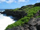 フラダンサーの定番、美しくて切ない愛の歌「Ka Makani Ka'ili Aloha(カ・マカニ・カイリ・アロハ)」